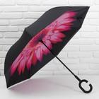 чёрный/розовый