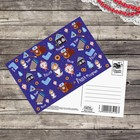 Почтовая карточка «Раша наша», 10 х 15 см