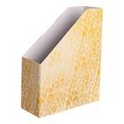 Органайзер для папок «Жаркие тропики», 24,6 х 30,1 х 9,6 см