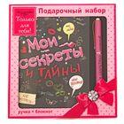 """Набор подарочный 2 в 1 """"Мои секреты и тайны"""": ручка+блокнот"""