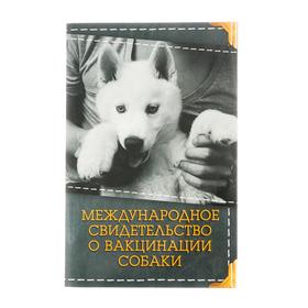 Международное свидетельство 'О вакцинации собаки' Ош