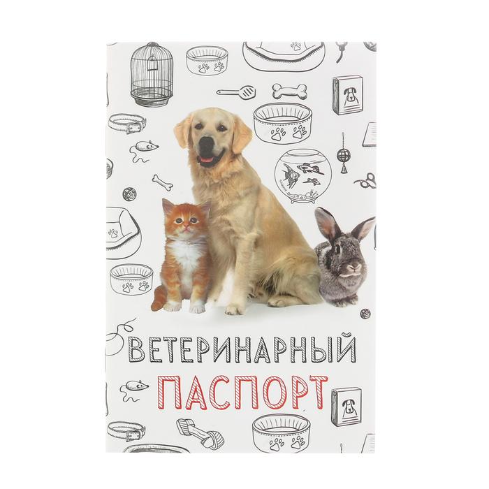 """Ветеринарный паспорт """"Мой лучший друг"""""""