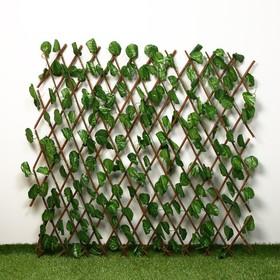 Ограждение декоративное, 200 × 120 см, «Лист ольхи», Greengo Ош