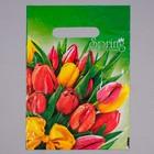 """Пакет """"Весна"""", полиэтиленовый с вырубной ручкой, 20 х 30 см, 30 мкм - фото 308292081"""
