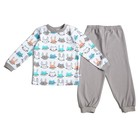 Пижама c манжетами  для мальчика, рост 104 см, цвет Зайки-серый U070111Y104