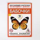 Обучающие карточки по методике Г. Домана «Бабочки», 10 карт, А6 - фото 105496619