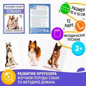 Обучающие карточки по методике Г. Домана «Собаки», 10 карт, А6