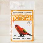 Обучающие карточки по методике Г. Домана «Попугаи», 10 карт, А6 - фото 105496633