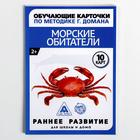 Обучающие карточки по методике Г. Домана «Морские обитатели»