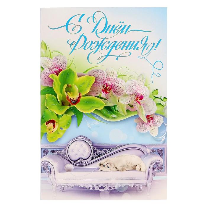 Мой, открытки орхидеями днем рождения