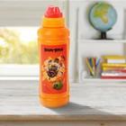 Бутылка для воды 450 мл Angry Birds