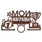 """Медальница """"Мои награды"""""""