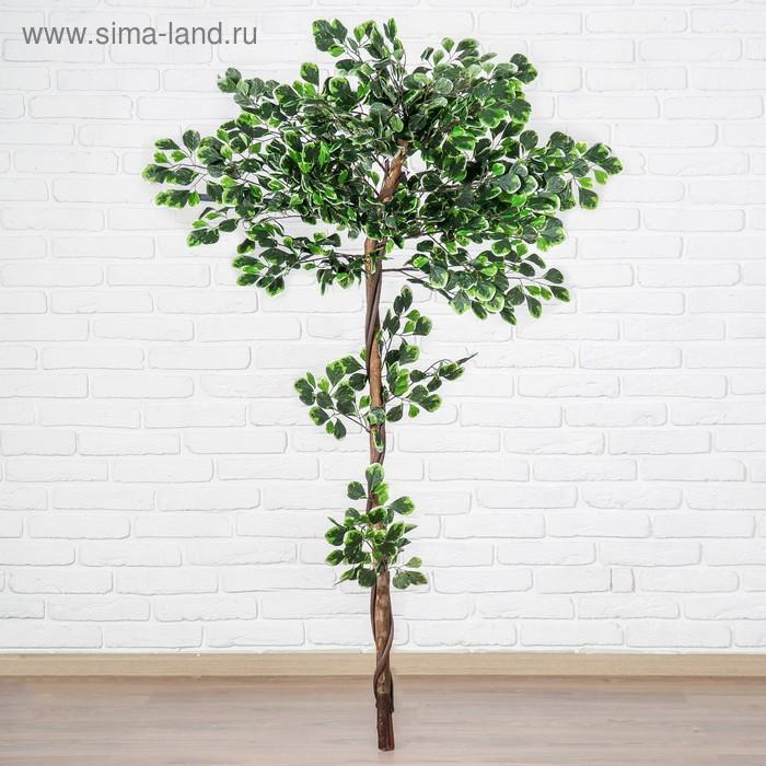"""Дерево искусственное """"Денежное"""""""