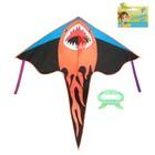 воздушные змеи для детского отдыха