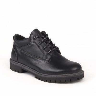 Ботинки мужские арт. 217104Б / байка (черный) (р. 40)