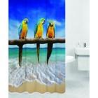 Штора для ванной PARROTS, цвет Попугаи HOT Print 180х200