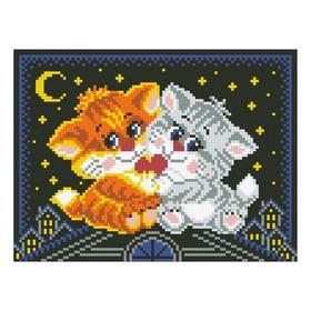 Набор алмазной вышивки «Котики на крыше»