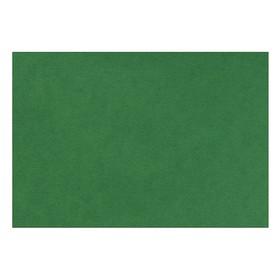 Бумага для пастели 210*297 Lana 'Lana Colours' 1л 160г/м² зеленый еловый 15723127 Ош