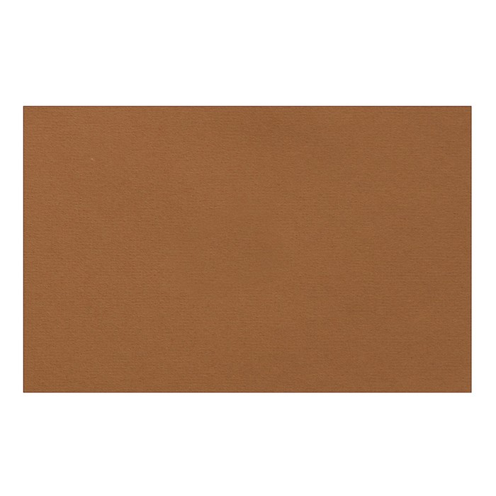 Бумага для пастели 210 х 297 мм, Lana Colours, 1 лист, 160 г/м?, сиена