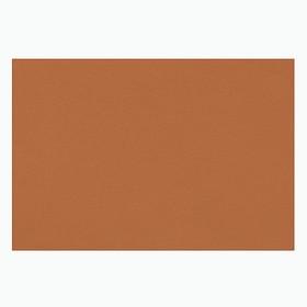 Бумага для пастели 297*420 Lana 'Lana Colours' 1л 160г/м² охра 15723184 Ош