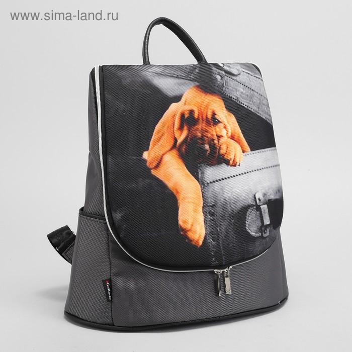 Сумка-рюкзак 5209 Доминика, 32*15*35, отдел на молнии, н/карман, Собачка