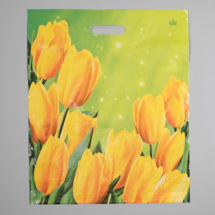 """Пакет """"Солнечные тюльпаны"""", полиэтиленовый с вырубной ручкой, 38 х 45 см, 60 мкм - фото 308292091"""