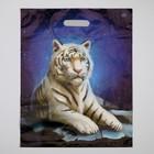 """Пакет """"Звездный тигр"""", полиэтиленовый с вырубной ручкой, 39 х 47,5 см, 60 мкм - фото 308291737"""