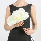 """Цветы для фотосессий """"Астра"""", белые"""