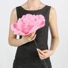 """Цветы для фотосессий """"Астра"""" розовая 30х30х40 см"""