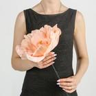 """Цветы для фотосессий """"Астра"""" кремовая 30х30х40 см"""