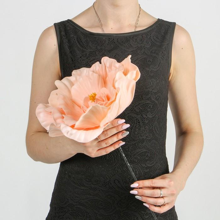 """Цветы для фотосессий """"Астра"""", кремовые"""