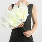 """Цветы для фотосессий """"Астра"""" белая 50х50х40 см"""