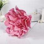 """Цветы для фотосессий """"Астра"""" розовая 50х50х40 см"""