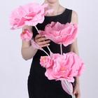 """Цветы для фотосессий """"Букет астр"""", розовые"""