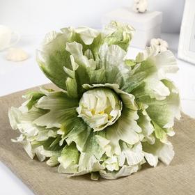 """Цветы для фотосессий """"Пион"""", зелёные"""