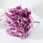 """Цветы для фотосессий """"Пион"""", розовые"""
