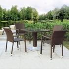 Комплект мебели из искусственного ротанга T606SWT/A2001B-W53 Brown (4+1)