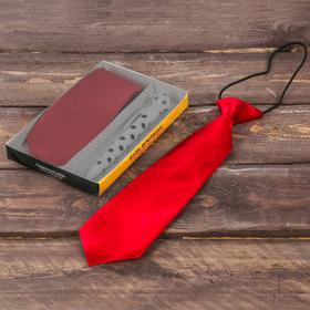 """Подарочный набор: детский галстук и ручка-мяч """"Будь впереди! Побеждай!"""""""