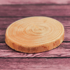 Спил 'Лиственницы', круглый, d=3-4 см, h=5 мм Ош