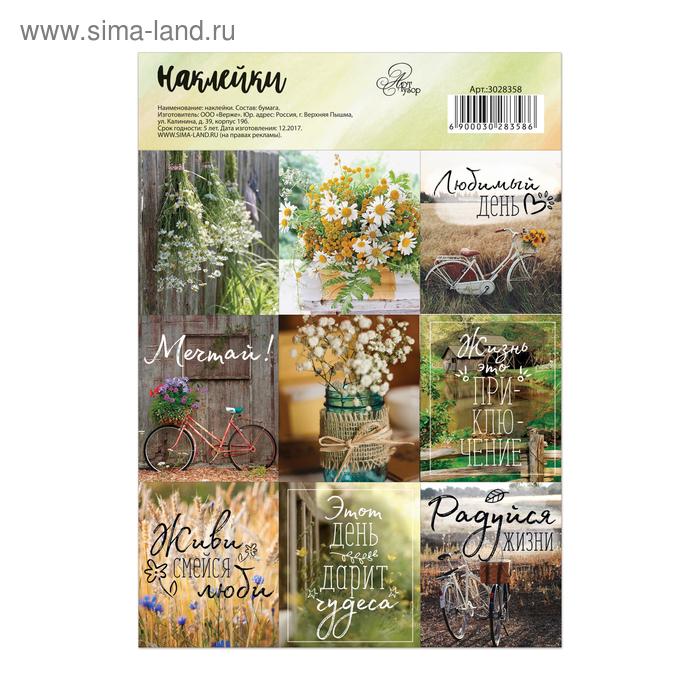 Бумажные наклейки «Радуйся жизни», 11 х 16 см
