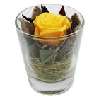 Композиция в стеклянном стакане, роза желтая, 7,1 х 7,1 х 8,3