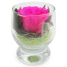 """Композиция в стеклянном стакане """"Акватик"""", роза ярко-розовая, 6,5 х 6,5 х 8,5 см"""