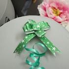 Bow-tie N1, 2, simple pattern