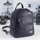 Рюкзак женский, отдел на молнии, 2 наружных кармана, цвет чёрный