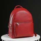 Рюкзак женский, отдел на молнии, 2 наружных кармана, цвет красный