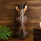 """Маска дерево """"Жираф"""" 50х16х7 см"""