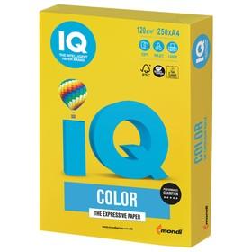 Бумага цветная А4 250 л, IQ COLOR Intensive, 120 г/м2, желтая, IG50