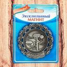 "Тарелка-магнит ""Воронеж"", 6,5 х 6,5 см"