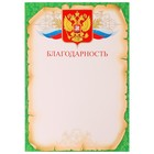 """Благодарность """"Универсальная"""" зелёня рамка, символика РФ"""