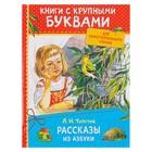 Книга с крупными буквами «Рассказы из азбуки». Толстой Л. Н. - фото 105675805